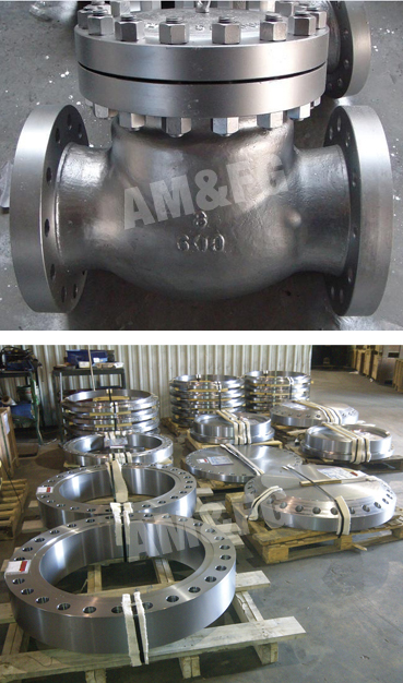 Forged Valves and Pumps